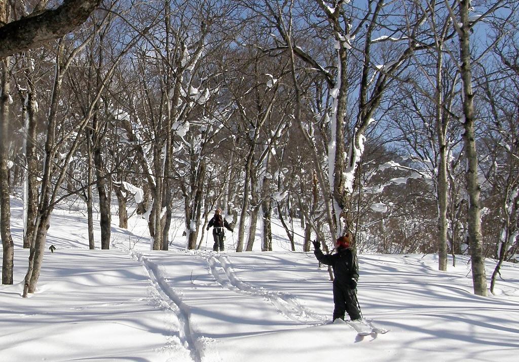 歩くスキー体験 雪の森スキーお散歩ツアー